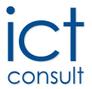 www.ictconsult.de