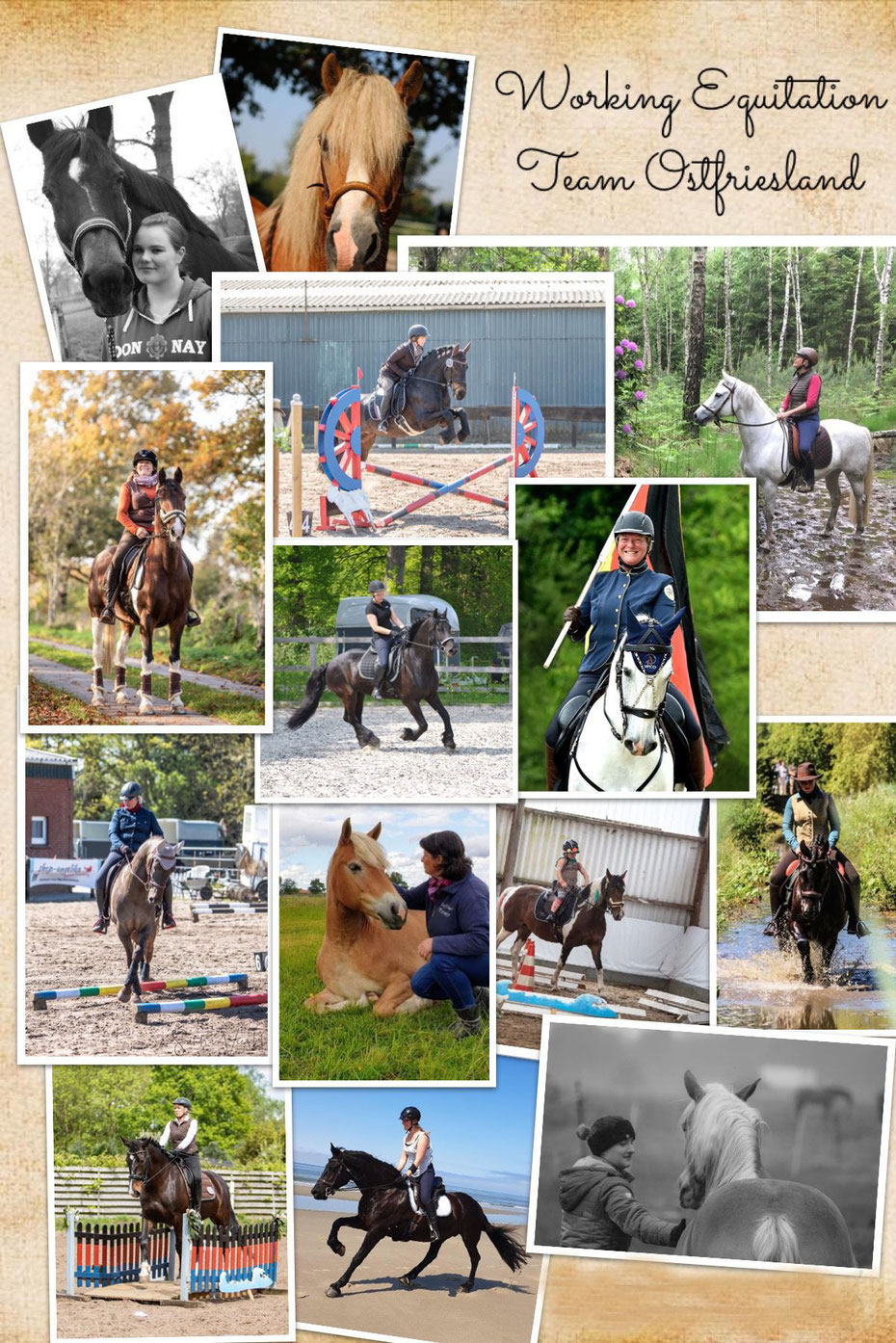 Working Equitation Team Ostfriesland