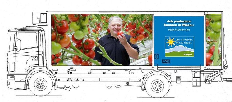 Markus Schiltknecht im Tomaten-Treibhaus