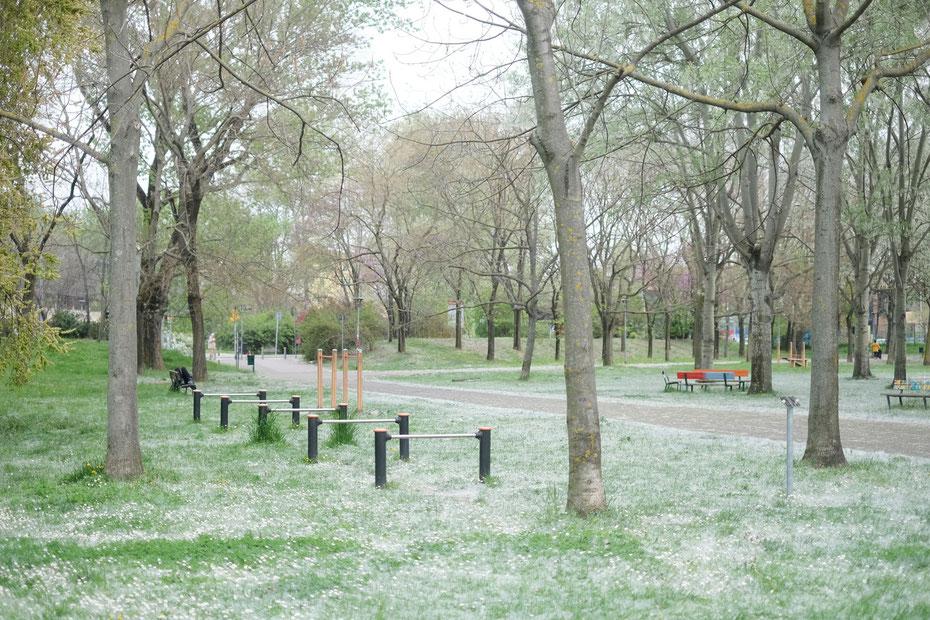 宿泊施設 B&B Bononia Fiera の前に広がるドン・ボスコ公園