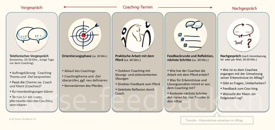 Ablauf eines pferdeunterstützten Einzelcoachings I horse-feedback.ch