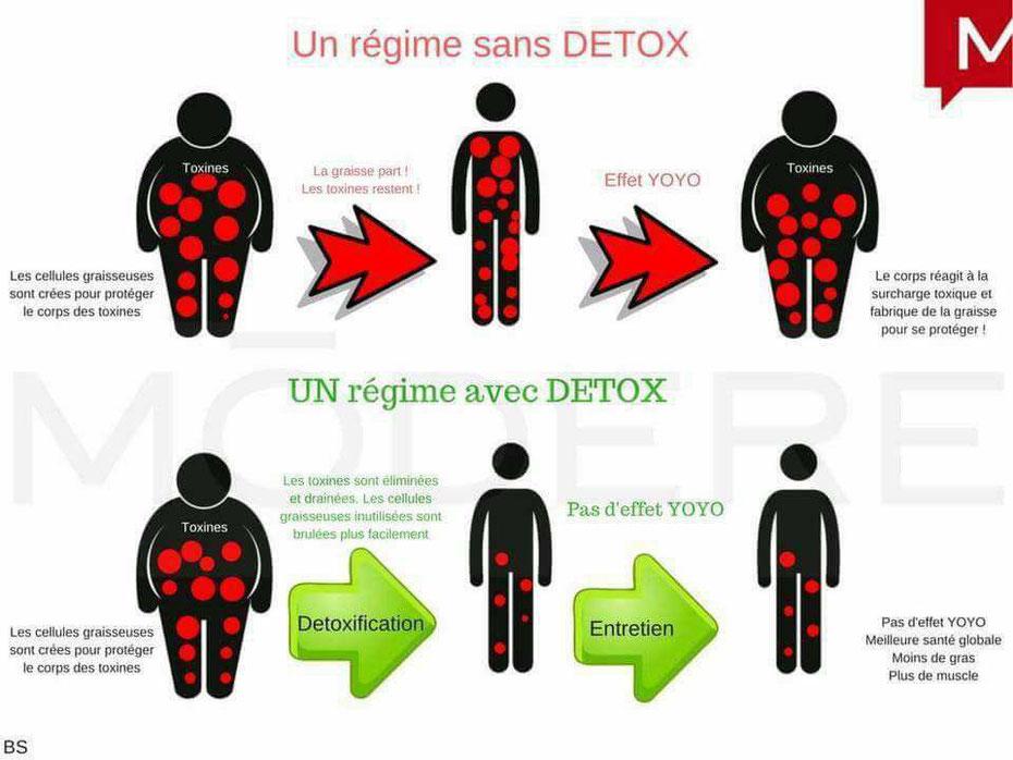Les toxines c est quoi