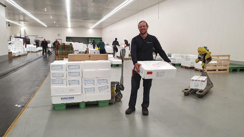 Kommissionierung Kühlwaren Frischlogistik Pratteln BL Fischhalle