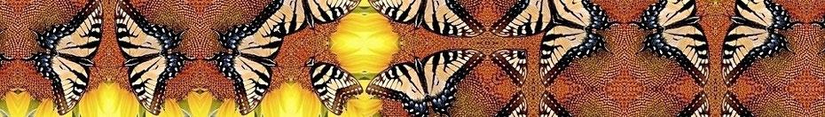 Kunstwerk Schmetterlinge, sich spiegelnd, braun - beige - gelb