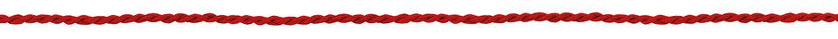 Hildegard Jakob - Logotherapie: der Rote Faden im Leben