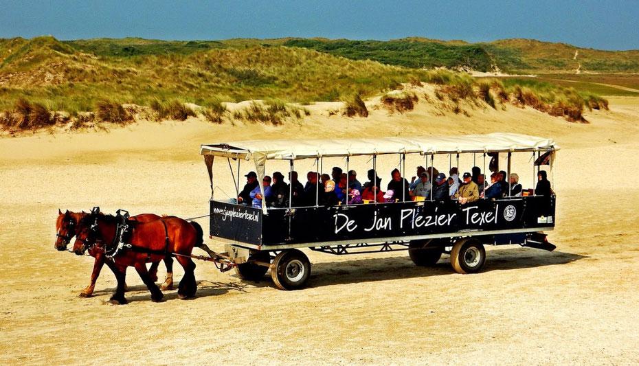"""<img src=""""image.jpg"""" alt=""""De Jan Plezier met twee Belgische trekpaarden in de duinen van Texel"""">"""