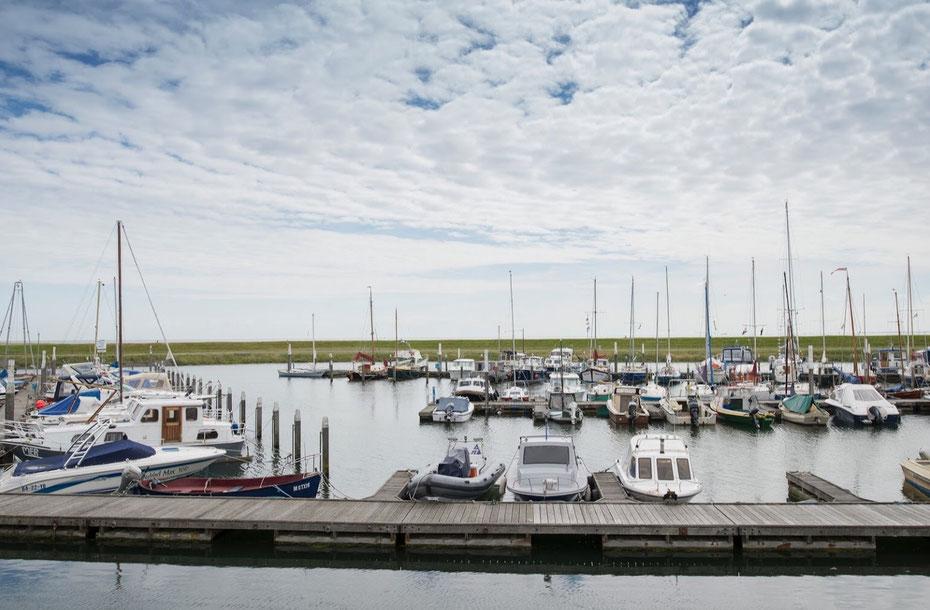 """<img src=""""image.jpg"""" alt=""""Het uitzicht vanuit restaurant """"De Compagnie""""op de haven met pleziervaartuigen te Oudeschild op Texel"""">"""