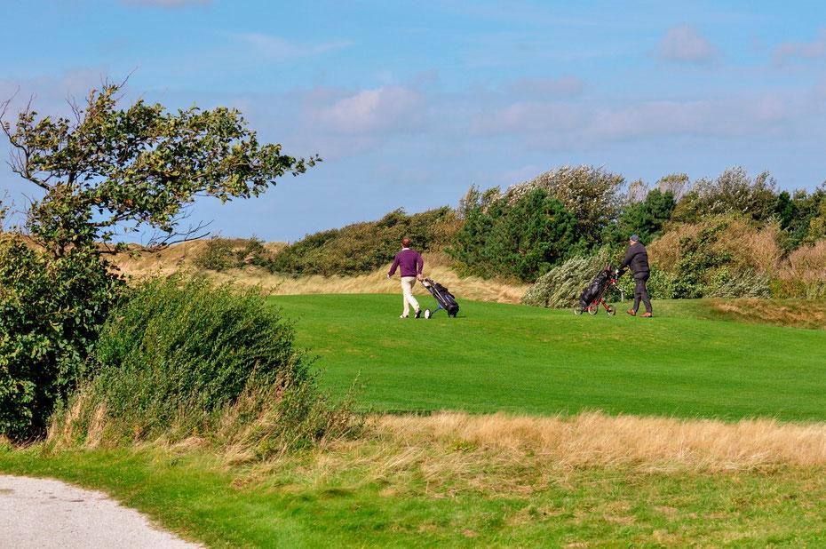 """<img src=""""image.jpg"""" alt=""""Fairway van golfbaan """"De Texelse"""" bij De Cocksdorp op Texel"""">"""