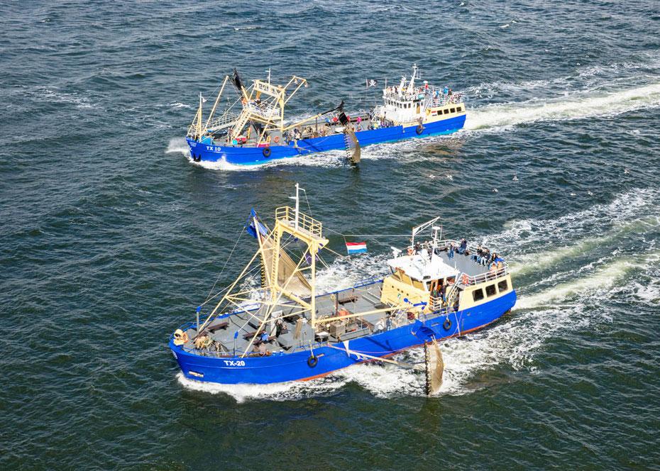"""<img src=""""image.jpg"""" alt=""""Twee garnalenvissersschepen de TX10 (Emmie) en de TX20 (Walrus) in volle zee op garnalenvangst"""">"""