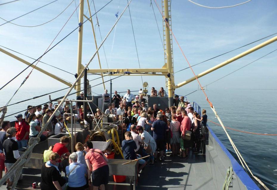 """<img src=""""image.jpg"""" alt=""""Toeristen aan dek op de garnalenvisboot op de Waddenzee"""">"""