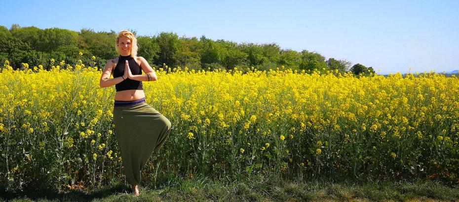 individuelle Audios - z.B. Meditationen, Einschlafhilfe oder Traumreisen. - von Sabrina Sierks Happiness Trainerin und Meditationsleiterin