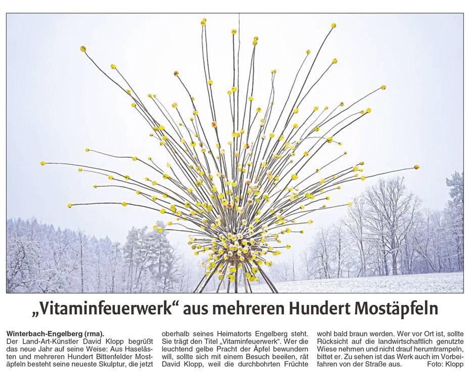 David Klopp | Land Artist | Presse |  Waiblinger Kreiszeitung: Vitaminfeuerwerk aus mehreren hundert Mostäpfeln