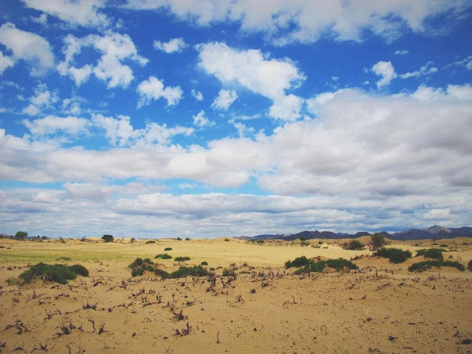 bigousteppes mongolie sable camion steppes els