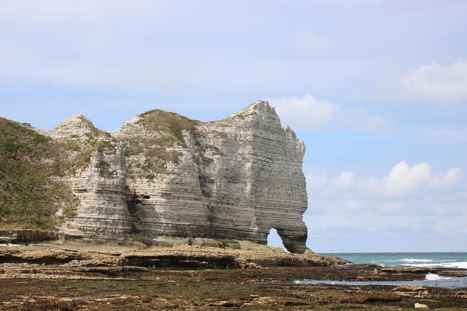Falaises d'Etretat, falaises d'amont, Porte d'Amont