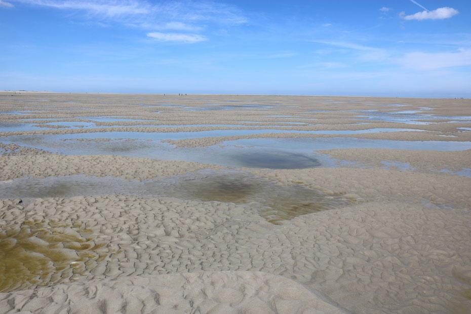 Baie de Somme, traversée de la baie