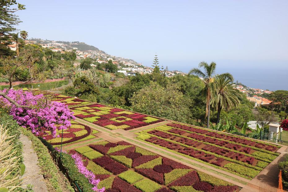 Jardin botanique de Funchal, Madère