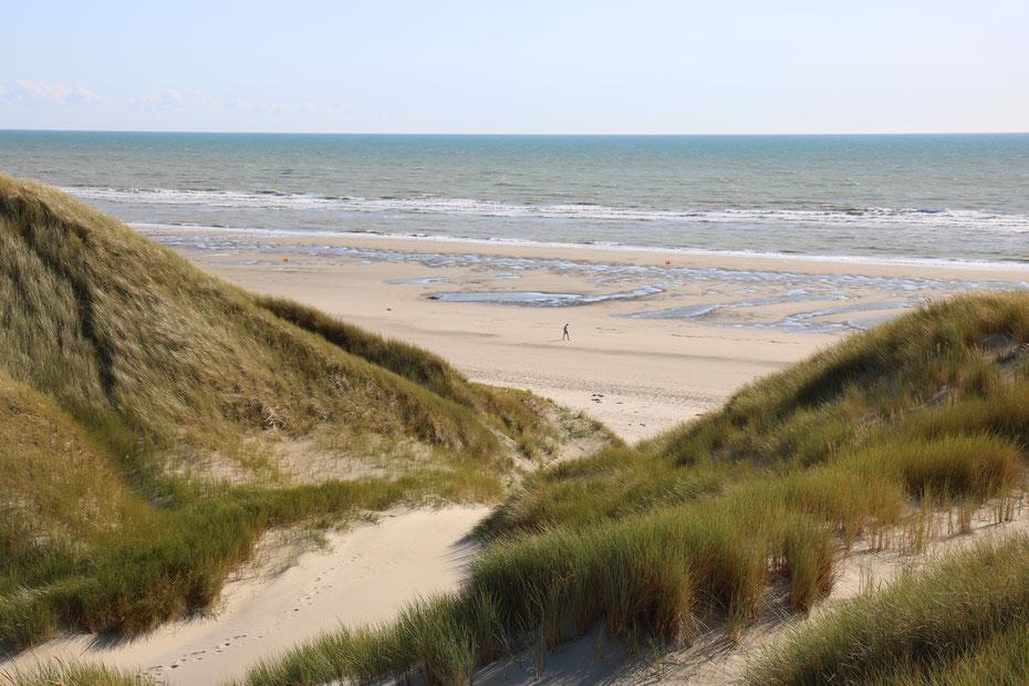 Baie de Somme, Fort-Mahon-Plage, dunes