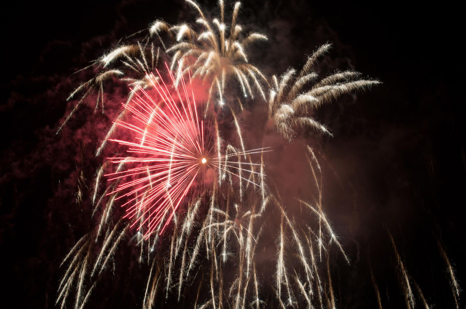 Happy New Year! - Photographie Nathalie Michel