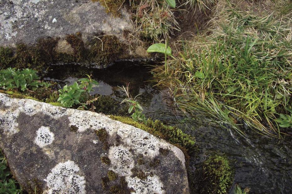 Wasser-Workshop Steinkraftinfo