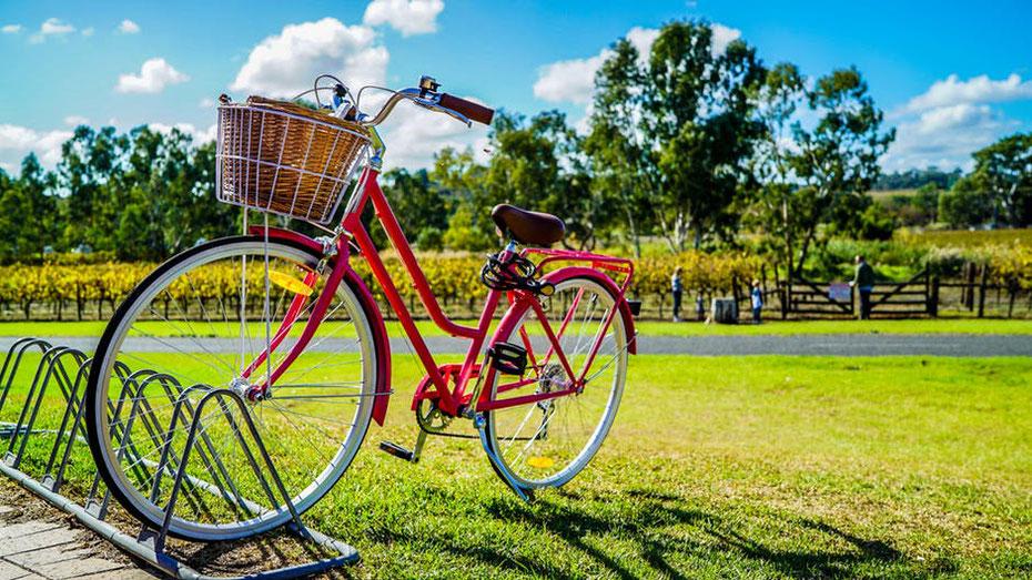 fahrrad fahrraeder e-bikes herrenrad damenrad mountainbikes trekkingrad guenstig billig tipps test erfahrungen kaufen meinungen vergleich online bestellen