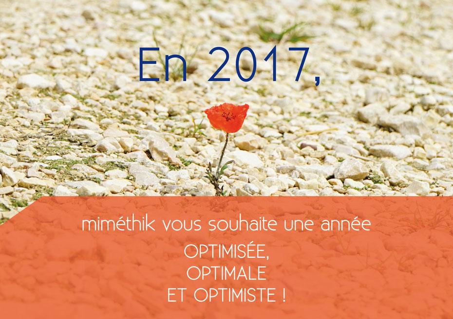 L'agence miméthik vous souhaite une excellente année 2017