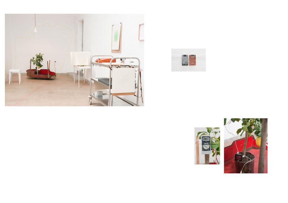 Institut für nutzloses üben, Installation und Produktionsstätte, Fabrik 45, Bonn 2014
