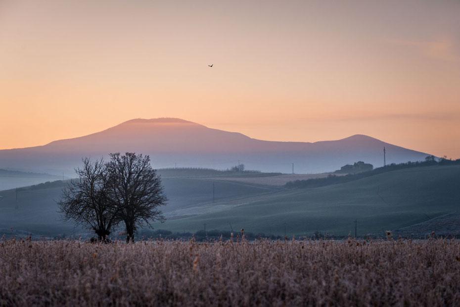"""Januarmorgen in der Nähe von unserem """"Podere Cancelli"""", im Hintergrund der Monte Amiata"""