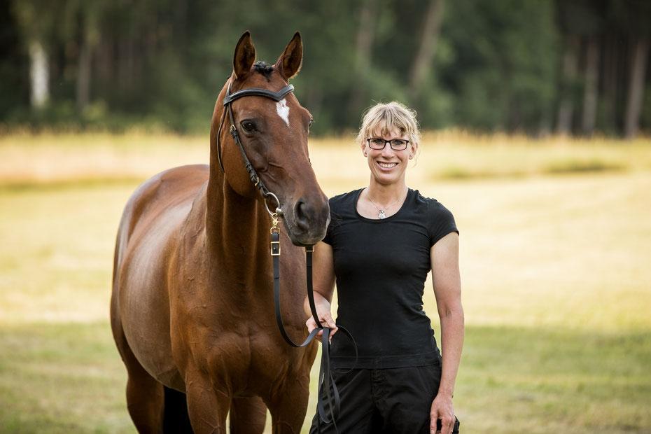 Zahnarzt , Akupunktur und Allgemeinmedizin für Pferde, Tierarztpraxis, Bouasker
