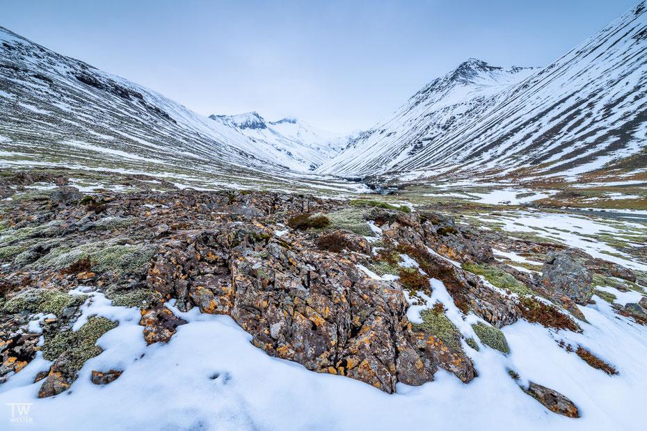 Ganz in der Nähe blickten wir während einer Wanderung auf diese Landschaft; der Schnee war stellenweise getaut und legte die tollen Farben der Flechten auf den Felsen frei (B1605)