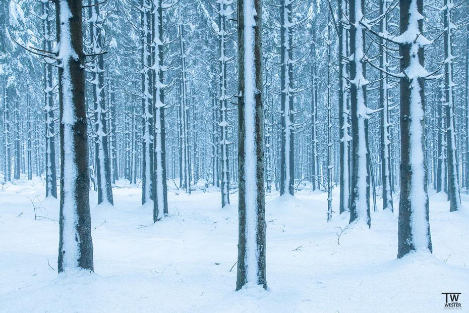 Nun zu den Winterbedingungen in der Hocheifel (B1583)