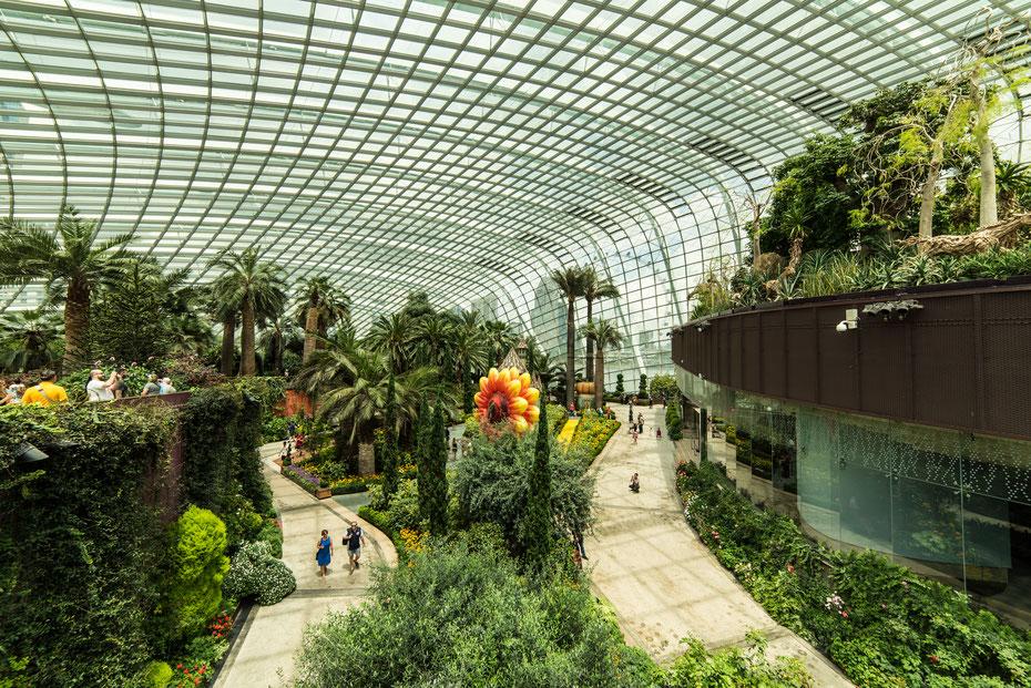 Gardens by the Bay - jeden Tag strömen tausende Touristen in den Park um sich exotische Pflanzen und deren Lebensräume anzuschauen.