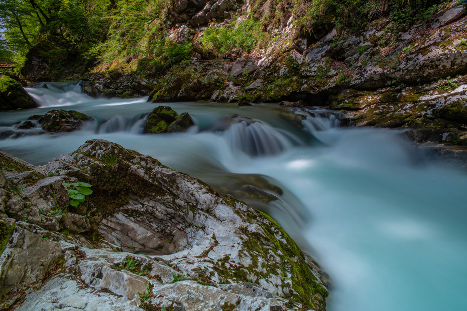 Vintgar Gorge, Slowenien [Mai 2019]