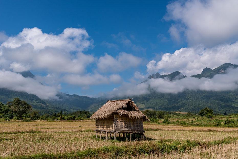 Der Norden von Laos oberhalb von Nong Khiaw. Endlose Reisfelder und Karstberge als Background. Ein wahres Paradies für Wanderer und Photographen.  Die Hütten dienen den Bauern als Schlafmöglichkeiten während der anstrengenden Feldarbeit.