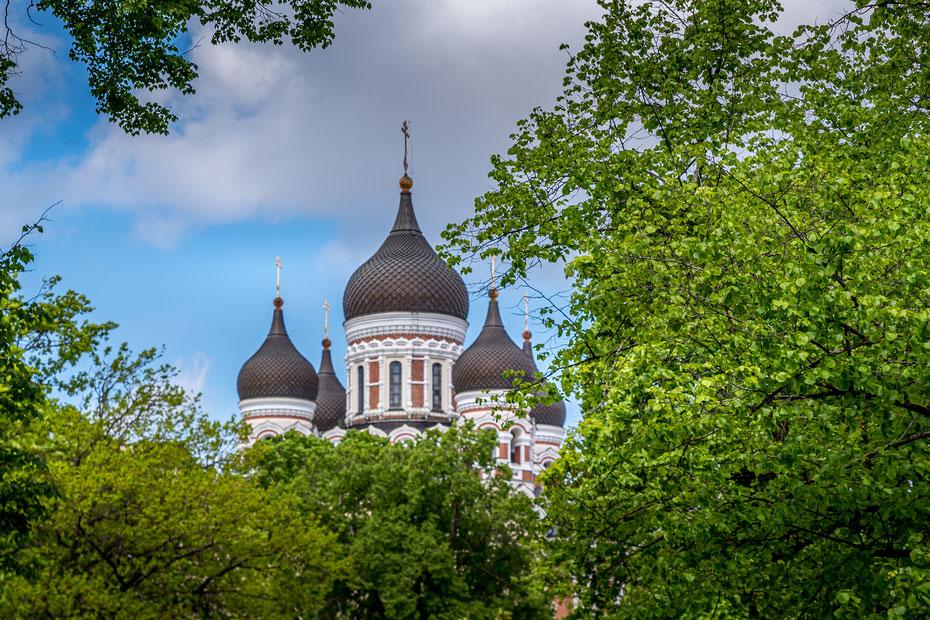 Blick auf die Alexander Nesky Kathedrale - die russisch-orthodoxe Kirche wurde zwischen 1894 und 1900 erbaut und ist dem russischen Nationalhelden/-heiligen gewidmet. Mit Sicherheit eines der Wahrzeichen Tallinns.