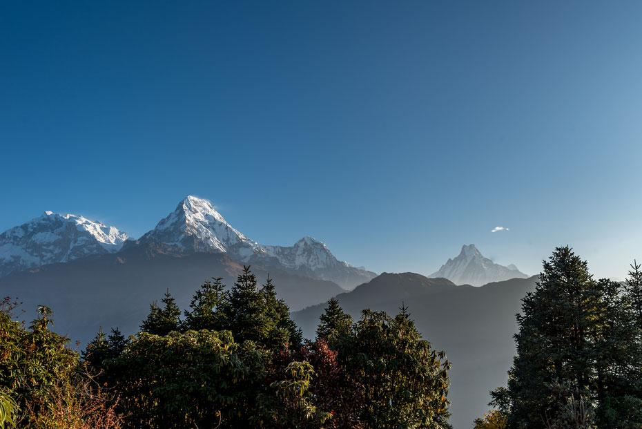 Annapurna I (8.091m), Annapurna Süd (7.219m), Hiunchuli (6.441m) und Machapucharé (6.993m) in einem Bild...