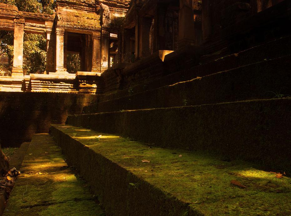 Der magische Ta Prohm Tempel, manchmal muss man auch mal andere Perspektiven wählen um ein vielphotographiertes Motiv in Szene zu setzen.