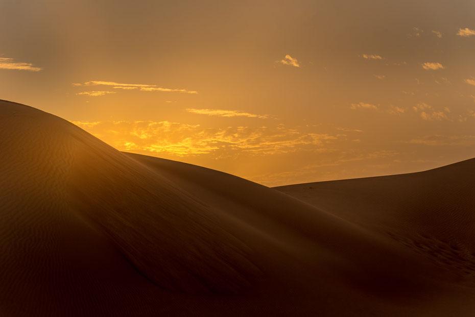Dubai von seiner allerschönsten Seite. Nur eine Stunde Fahrtzeit von der hektischen Stadt könnte man in der Wüste alle Ruhe finden die man sich wünscht. Wären da nicht die vielen Jeeps die Touristen durch die Dünen kutschieren...