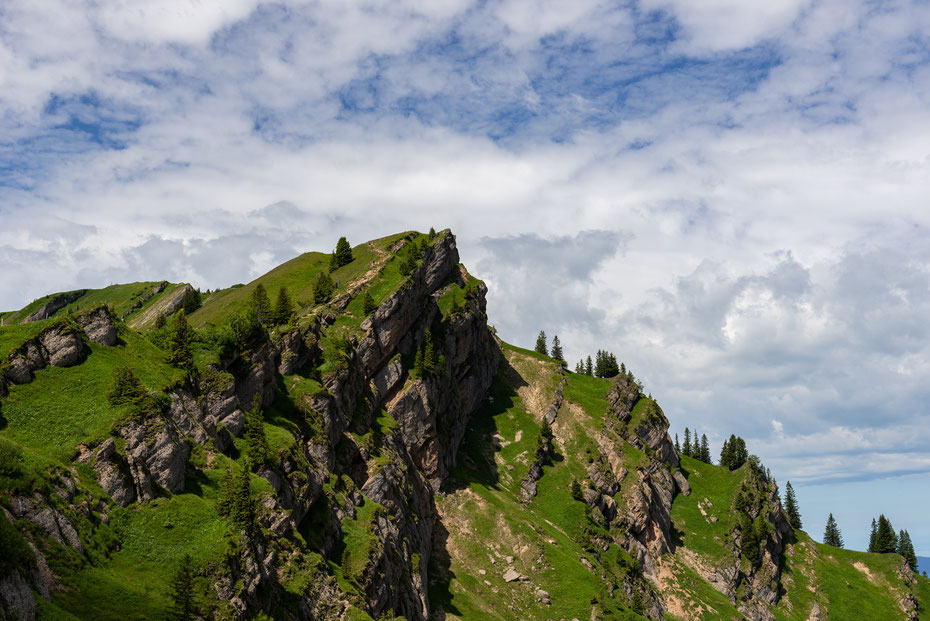 Die Nagelfluhkette ist ein echter Blickfang! Der Blick nach Osten vom Hochgrat (1.834 Meter).