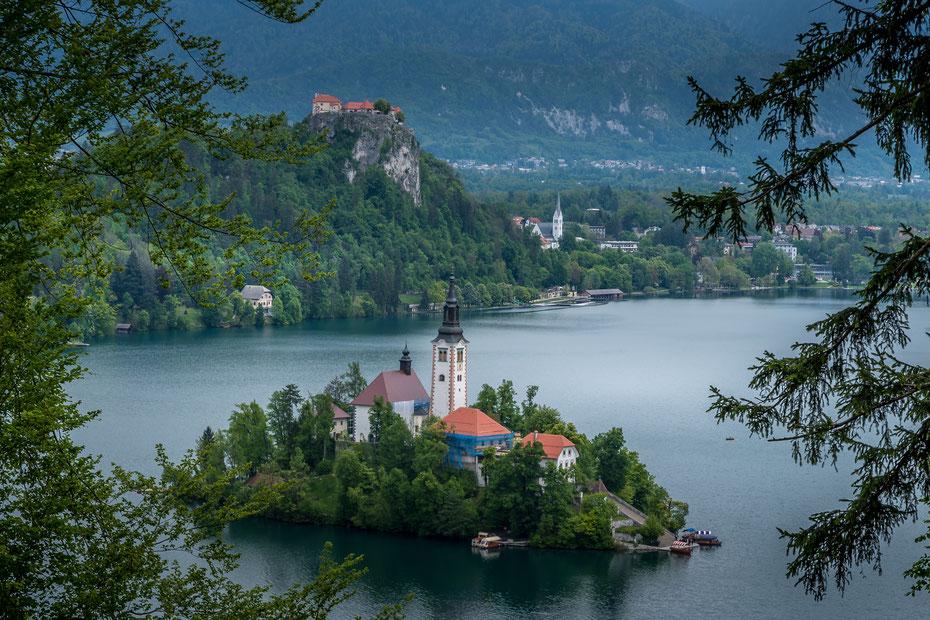 Der Aufstieg zu den Aussichtspunkten rund um den See lohnt sich bei diesem Panorama auf die Marienkirche (vorne) und die Burg Bled (Blejski Grad).