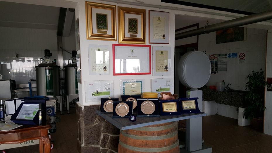 Weltbeste Olivenöle - Auszeichnung um Auszeichnung gewinnt Fonte di Foiano