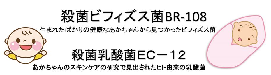 ビフィズス菌BR-108。乳酸菌EC-12の説明。