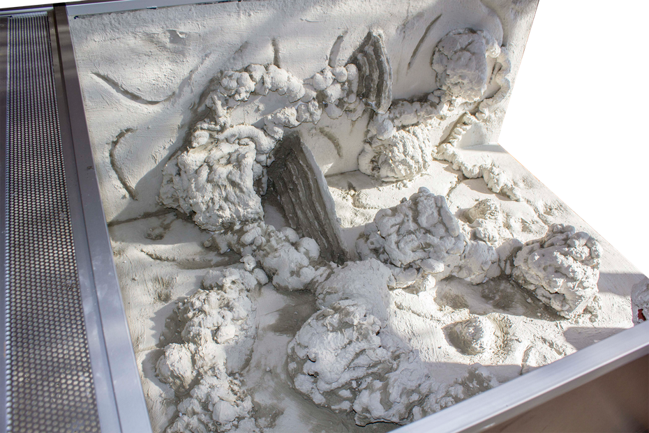Fliesenkleber Phelsuma grandis grosser madagaskar taggecko Terrarium Rückwand selber bauen