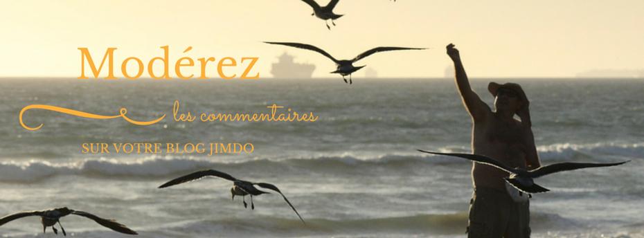 Modérez les commentaires sur votre blog Jimdo http://goo.gl/lzaNgR