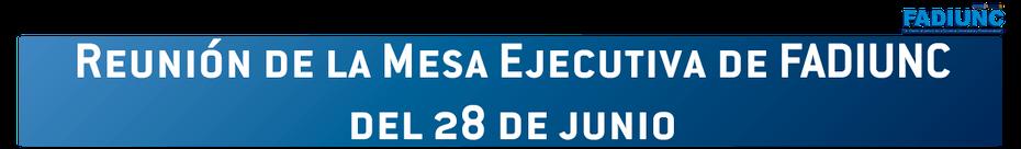 Reunión de la Mesa Ejecutiva de FADIUNC del 28 de junio