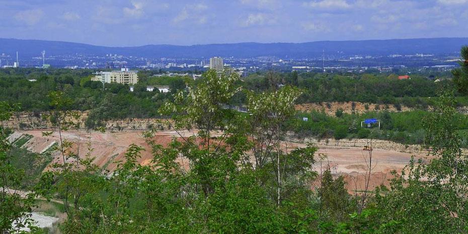 Geht es nach der Stadt, soll im Laubenheimer Steinbruch eine Deponie für mineralische Abfälle entstehen. (Archivfoto: hbz/Kristina Schäfer)