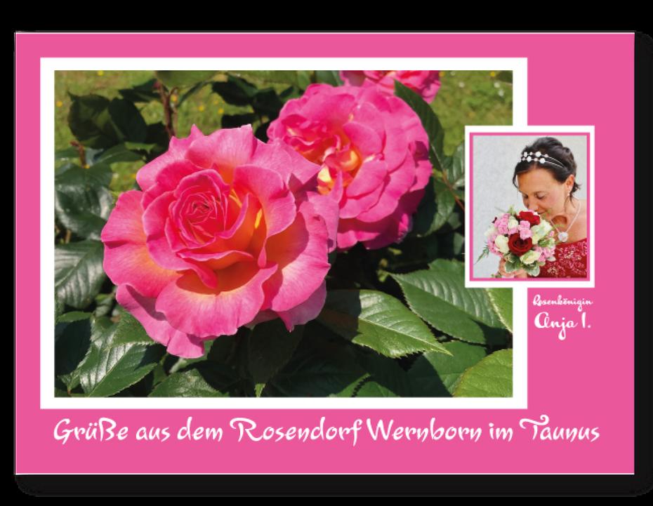 Die Postkarte Rosendorf Wernborn gibt es beim Rosenfest am 23. Juni 2019 am Stand der Kunstwerkstatt UKo-Art