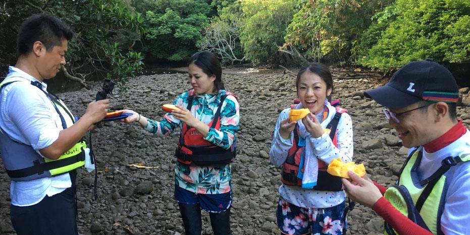 西表島・早朝カヌーカヤックツアー【サガリバナ&滝あそび+鍾乳洞】