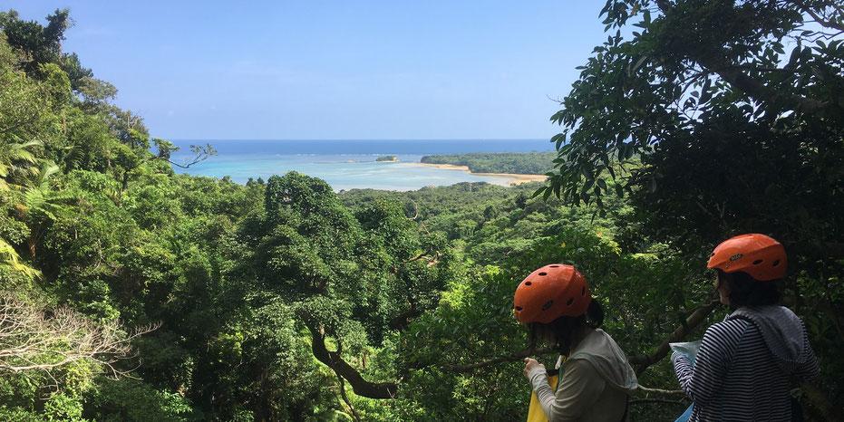 西表島・ガイドにおまかせツアー【沢・滝遊び+鍾乳洞&マングローブカヌー】