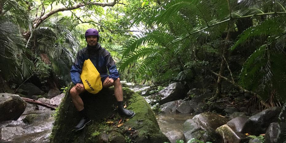 西表島・ガイドにおまかせツアー【沢・滝遊び&マングローブカヌー】