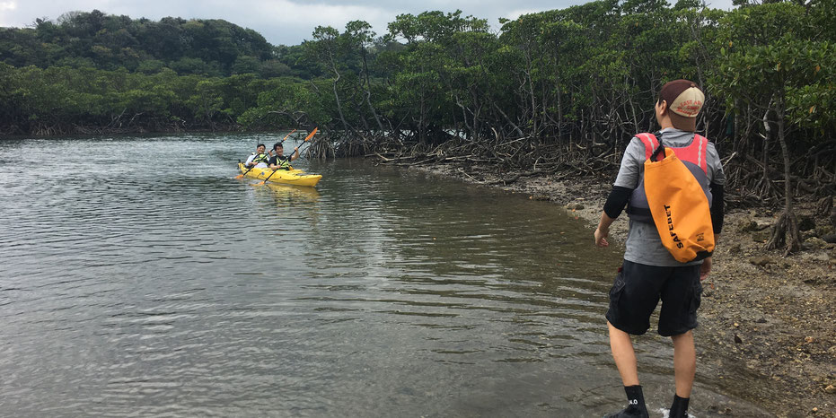 西表島・ガイドにおまかせツアー【マングローブカヌー&沢・滝遊び おまけ海遊び】
